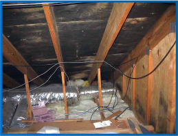 Mold & Mildew under a roof